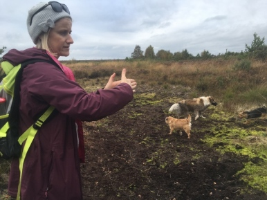 Kate talk about how the dry summer had caused the bog pond to disappear