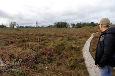 Such a wide open landscape on bogs